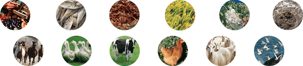 Composting-free Technology