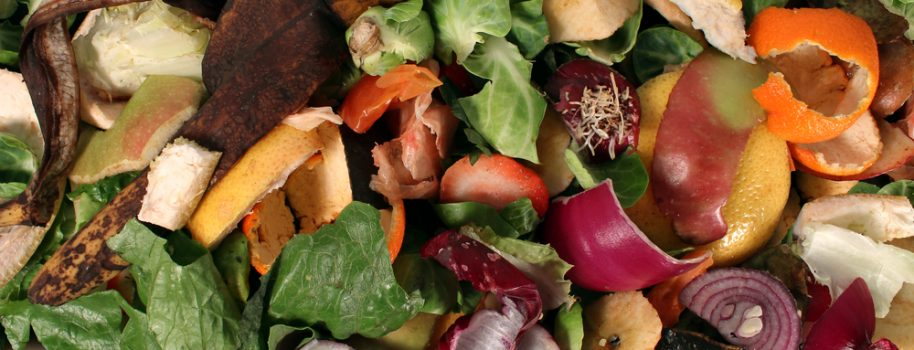 Organic waste Treatment Methods