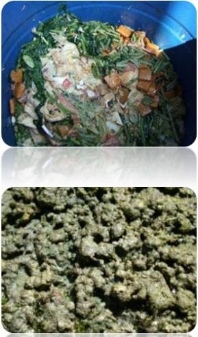 Solution of Organic Waste Treatment for household