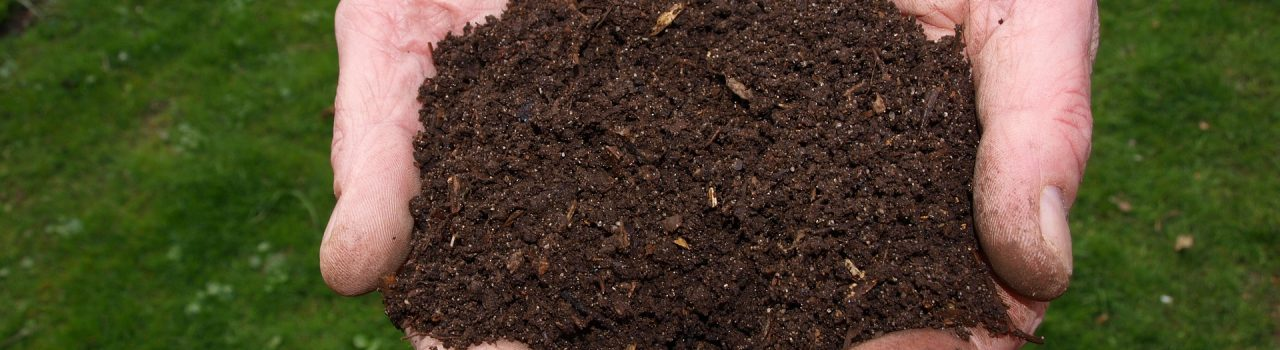 Make organic fertilizer at home