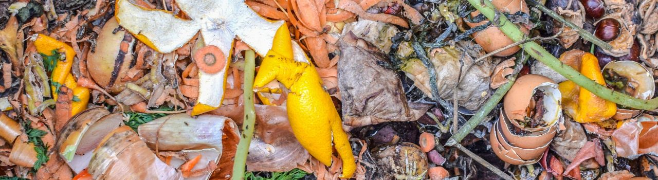 4 Options for Organic Waste Management